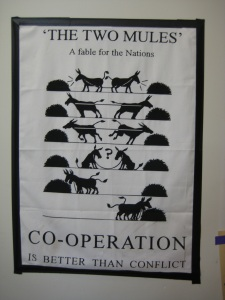 elyse cooperation 2